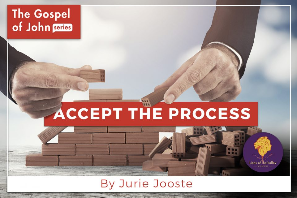 Accept the Process | The Gospel of John Series | Lions of the Valley DC